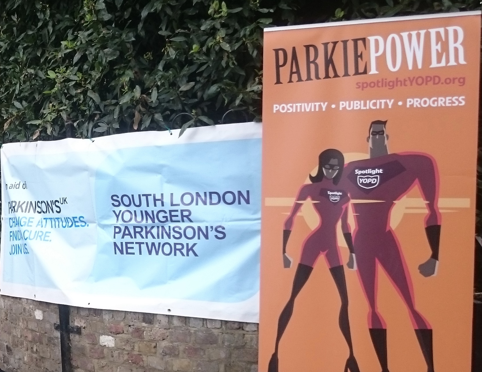 Paddle for Parkinsons
